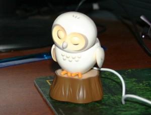 I have bored the owl already.