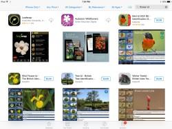 flower_apps